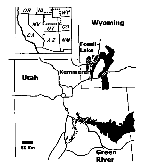 Outcroop map of Green River Formation Fossils sites.